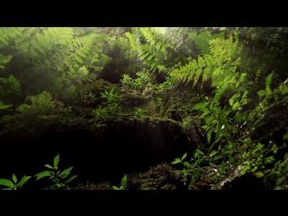 Islas canarias la energía que te espera