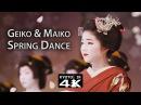Kyoto Event Kitano Odori Dance Performance 4K