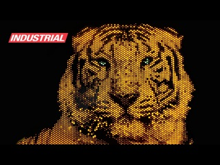 CNC Project: LED Light Art Acrylic Tiger w/Amana Tool Solid Carbide Spiral 'O' Flute Router Bits