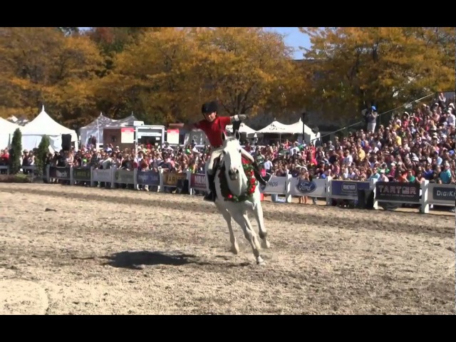 Wave the Flag - Bridleless World Equestrian Games Jumping Perfomrance- Lizzy Traband Schoenrosa