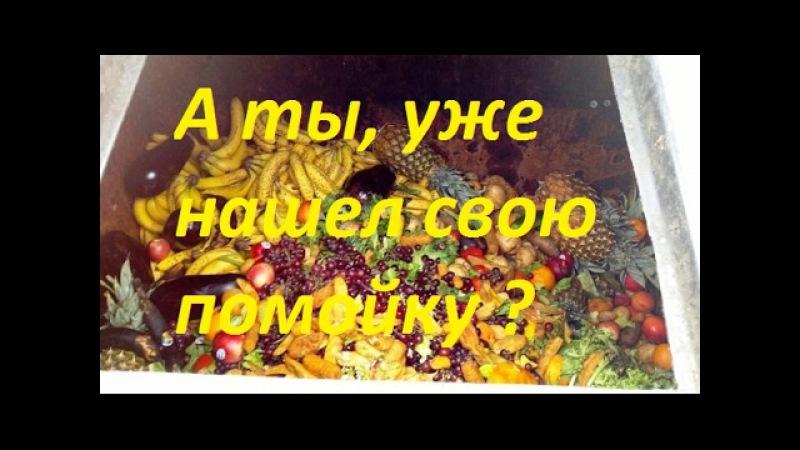Пенсионеры России ищут еду на помойках. Великая страна Почет старикам и Слава !!