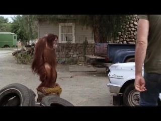 """Clint Eastwood """"Every Which Way But Loose"""" (1978)"""