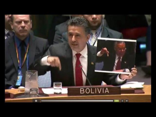 Постпред Боливии назвал удар США по Сирии вопиющим нарушением устава ООН 07.04.2017