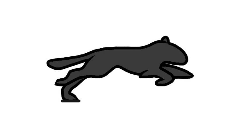 ощупь напоминает бег пантеры гиф счет