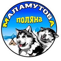Логотип Malamut Club / Катание на собачьих упряжках
