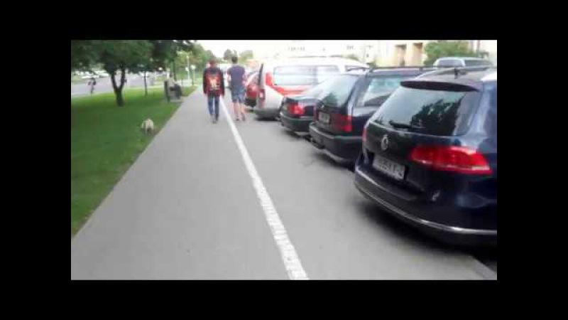 Ул.Брикеля. Велосипедная часть тротуара.