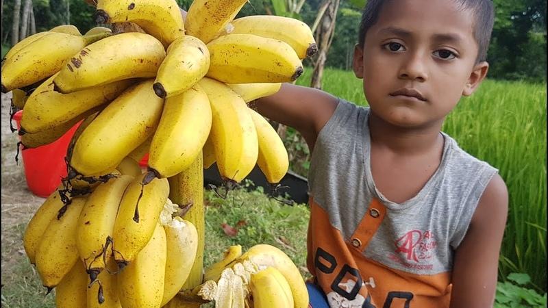 Ripe Banana Milk Shake Banana Desert Kheer Cooking To Feed Village Kids Most Tasty Sweet