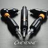 Cheyenne Hawk Russia