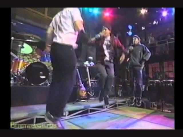 Beastie Boys So Watcha Want