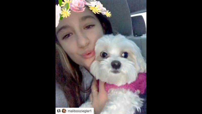 Maliboo's instagram 4