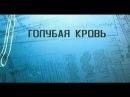 Голубая кровь. Открытие Ф Белоярцева.