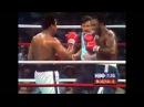 Легендарные бои — Али-Фрейзер 3 (Триллер в Маниле, 1975) | FightSpace