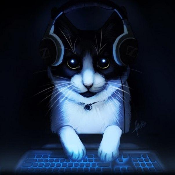 Картинки крутой кот в наушниках