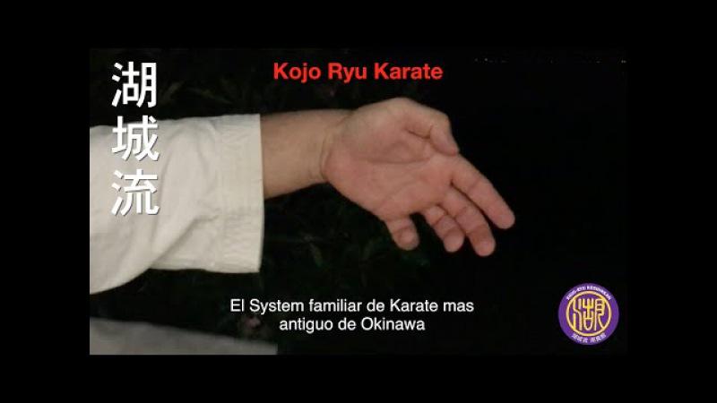 Kojo Ryu Koshinkan Español