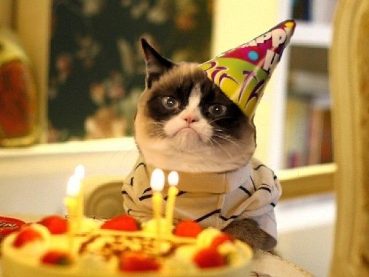 День рождения пнг картинки внимательна