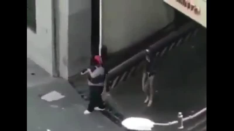 Сторонники Мадуро Colectivos стреляют в протестующих