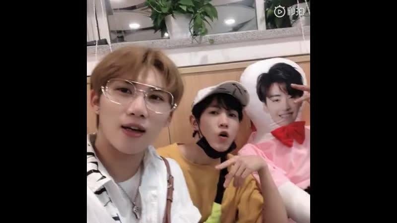 Musen weibo