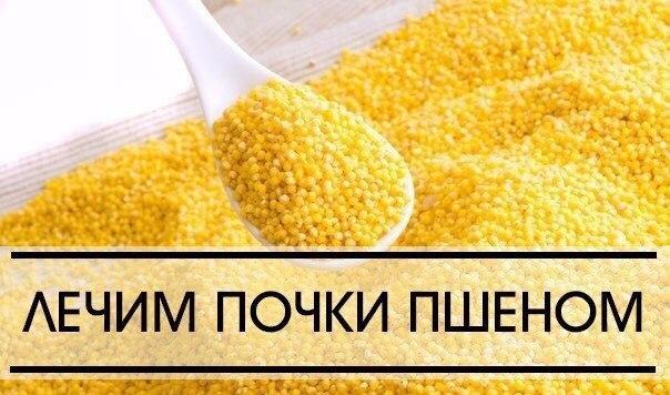 СТАРИННЫЙ РЕЦЕПТ - ЛЕЧЕНИЕ ПОЧЕК ПШЕНОМ | ВКонтакте