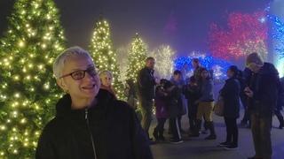 Рождественское освещение парка на территории Храма Моромонов в Ванингтоне