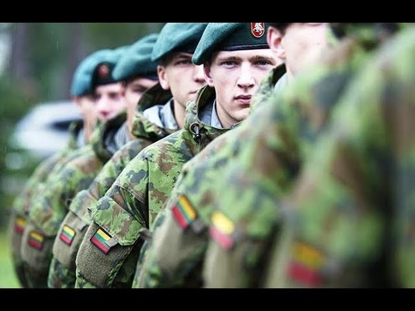 Литва и Польша стянут войска к границе с Россией