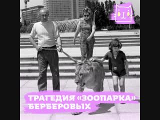 Трагедия зоопарка семьи Берберовых