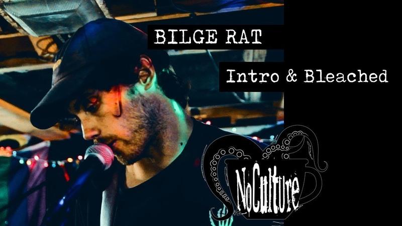 Bilge Rat Intro bleached Live @ No Culture