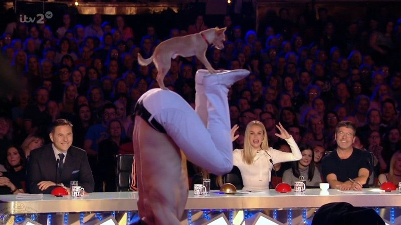 Britain s Got More Talent 2017 Christian Stoinev Percy the Acrobatic Dog from AGT Full Clip S11E