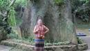 263 Вьетнам ДАЛАТ ДЖУНГЛИ дорога в НАЦИОНАЛЬНЫЙ ПАРК ПРЕНН Vietnam Prenn National Park Waterfall