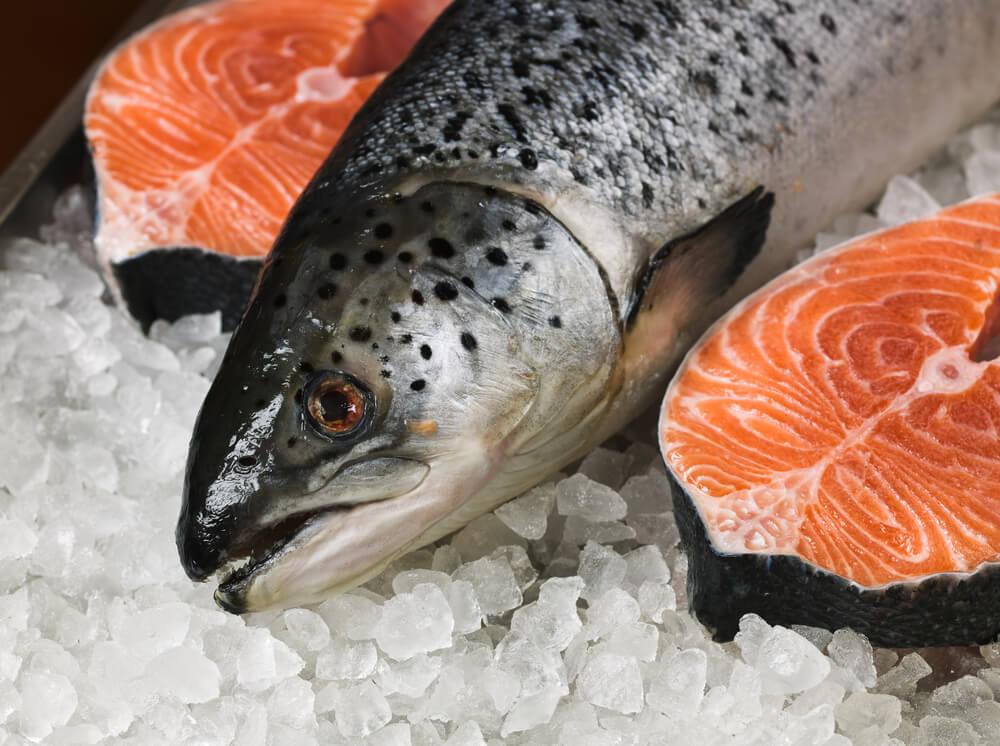 Мясо лосося очень нежное и его регулярно используют при готовке