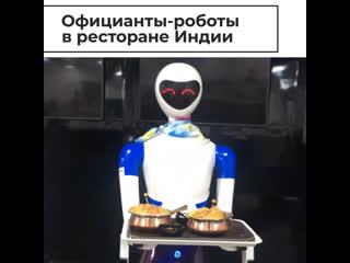 Роботы-официанты в ресторане Индии