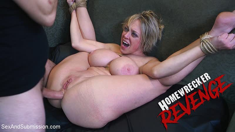 Dee Williams Homewrecker