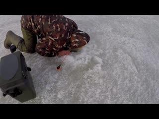 Как приманить окуня Лайфхак от опытного рыбака