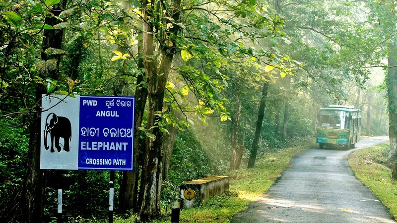 Nature Tourism in Odisha A Comprehensive Guide for Tourist Nature Enthusiast