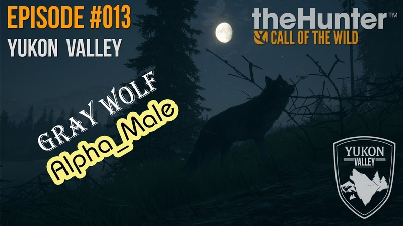 TheHunter COTW Ep 013 Wolf Alpha Male