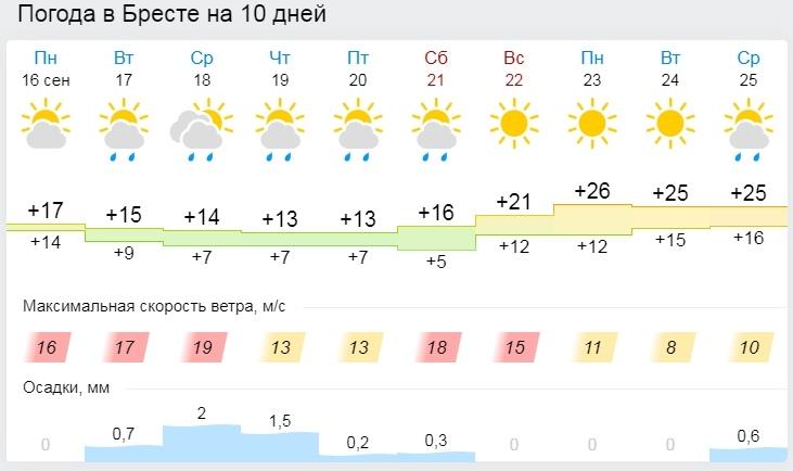 Дожди и похолодание. Все о погоде в Бресте на неделю