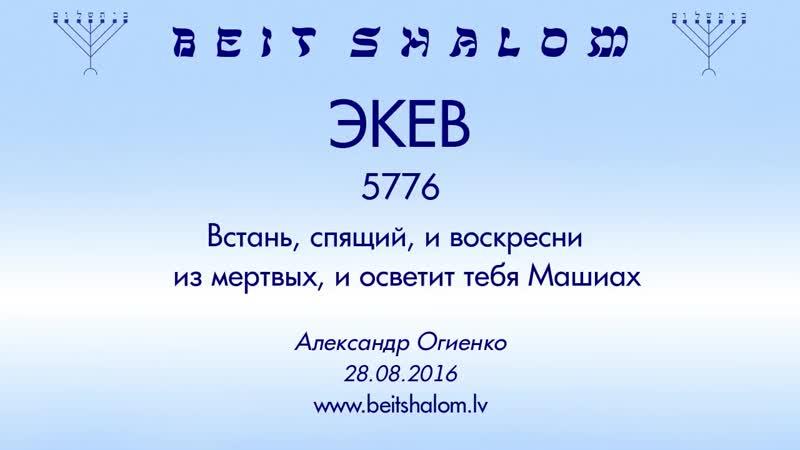 «ЭКЕВ» 5776 «ВСТАНЬ, СПЯЩИЙ, И ВОСКРЕСНИ ИЗ МЕРТВЫХ, И ОСВЕТИТ ТЕБЯ МАШИАХ» А Огиенко (28 08 2016)