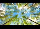 VIDEO 2020 05 01 08 39