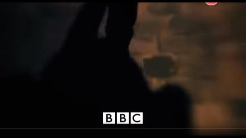 BBC Числа Тайный код жизни Документальный фильм