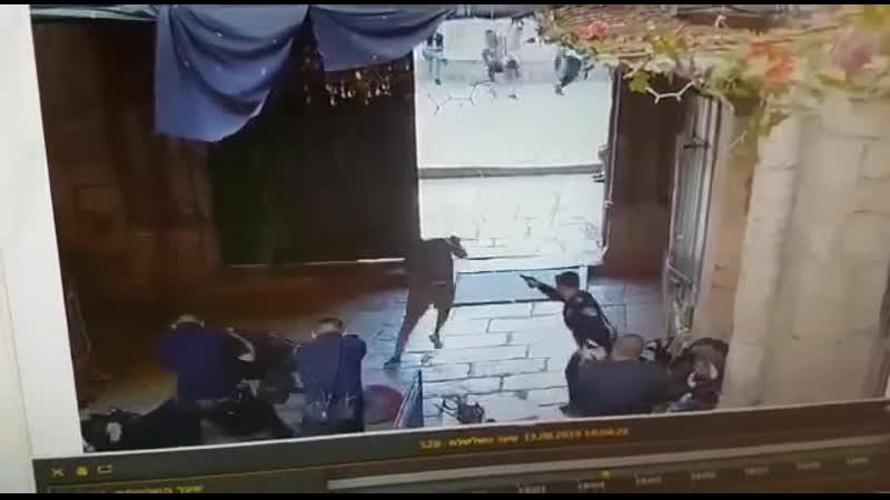 Подростки попытались напасть с ножами на полицейских в Иерусалиме. Один из них был убит, второй – получил тяжелое ранение.