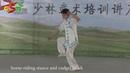 Shaolin Yin hand Stick 14