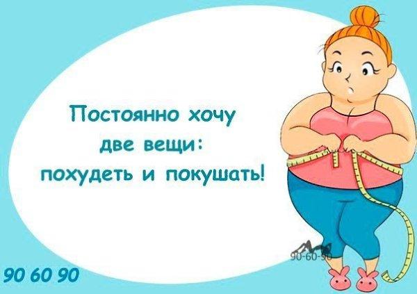 Похудеть Хочу Похудения.