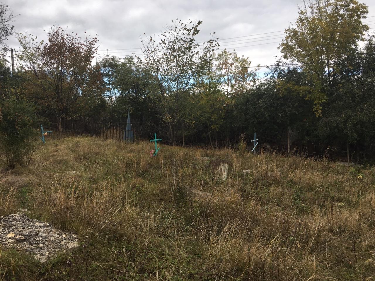 Прогулки среди могил: дикое кладбище в Диком селе — Изображение 1