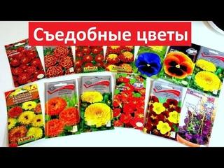 ПОСЕЙТЕ ЭТИ ЦВЕТЫ.  Яркие, полезные, вкусные.Съедобные цветы для летнего стола.
