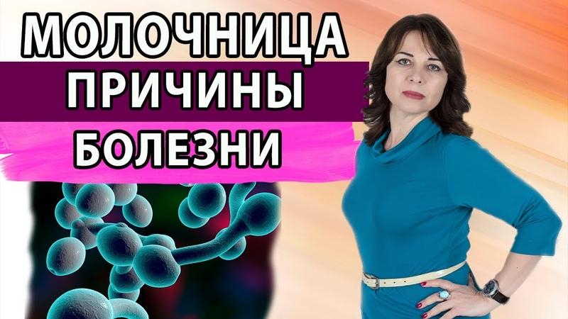 Молочница Причины болезни Грибковые заболевания Женское здоровье Гинекология