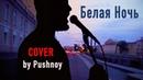 Александр Пушной Белая Ночь COVER feat Жучков