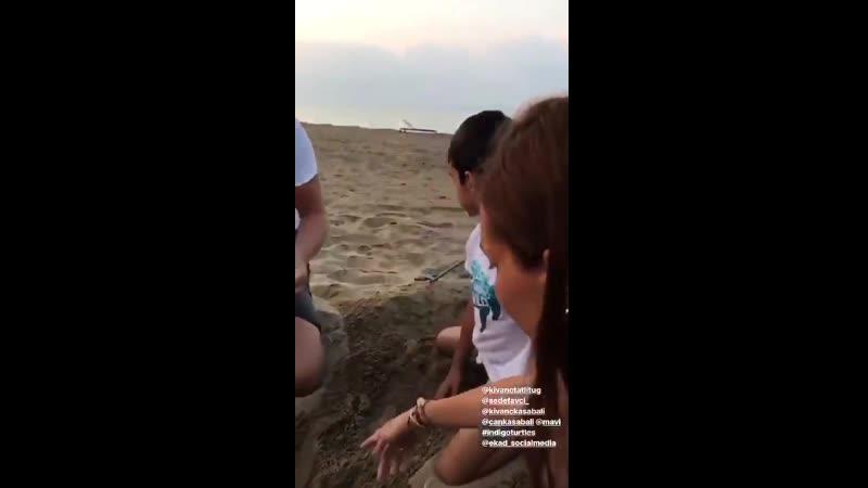 VIDEO Kıvanç Tatlıtuğ, Sedef Avcı, Kıvanç Kasabalı ve Can Kasabalı, Mavinin İndigo Turtles