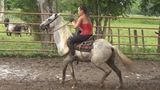 نسخة عن ponyboy RWM E70