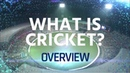 What Is Cricket? Get to know the sport