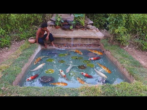 Build a waterfall fish pond