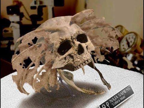 Невероятная находка археологов МНОГОЕ объясняет С трашные тайны исчезнувших цивилизаций Тайны мира